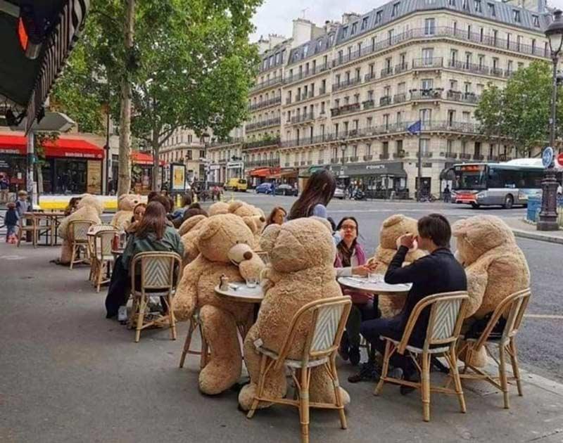 restaurantes na frança utilizam ursos para delimitar o espaçamento entre clientes